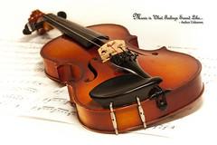 Music is What Feelings Sound Like (NYRBlue94) Tags: music instrument macro violin string bridge feelings sound sheetmusic white highkey photoshop