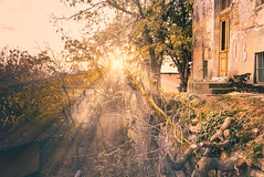 A fairy tale (Master Iksi) Tags: belgrade serbia light sun abstract amazing shiny old house architecture street sidewalk