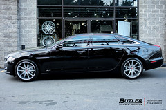 Jaguar XJ with 20in Savini BM12 Wheels and Michelin Pilot Super Sport Tires (Butler Tires and Wheels) Tags: jaguarxjwith20insavinibm12wheels jaguarxjwith20insavinibm12rims jaguarxjwithsavinibm12wheels jaguarxjwithsavinibm12rims jaguarxjwith20inwheels jaguarxjwith20inrims jaguarwith20insavinibm12wheels jaguarwith20insavinibm12rims jaguarwithsavinibm12wheels jaguarwithsavinibm12rims jaguarwith20inwheels jaguarwith20inrims e63with20insavinibm12wheels e63with20insavinibm12rims e63withsavinibm12wheels e63withsavinibm12rims e63with20inwheels e63with20inrims 20inwheels 20inrims jaguarxjwithwheels jaguarxjwithrims e63withwheels e63withrims jaguarwithwheels jaguarwithrims jaguar e63 jaguarxj savinibm12 savini 20insavinibm12wheels 20insavinibm12rims savinibm12wheels savinibm12rims saviniwheels savinirims 20insaviniwheels 20insavinirims butlertiresandwheels butlertire wheels rims car cars vehicle vehicles tires
