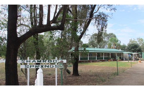 65 Reading Road, Gunnedah NSW 2380