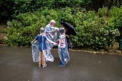 Summer Holiday, Peasholme Park, Scarborough (Craig Atkinson ©) Tags: candid craigatkinson family holiday peasholmepark scarborough street streetphotography washout waterproof weather wet portrait rain seaside summer