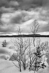 In Winter's Grip (Mono) (Roantrum) Tags: finland frozenlake roantrum