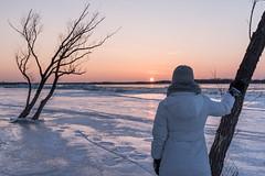 Petrie Island on the Coldest Day : March 11, 2017 (jpeltzer) Tags: ottawa winter petrieisland ottawariver