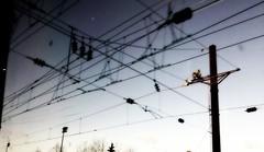 Entangled-by-wires-upon-entering-Philly--2016-03-29-07.18.40.40 (mbgmbg) Tags: 30ststation desaturate entangledbywiresuponenteringphilly industriallandscape kw2flickr kwgooglewebalbum kwphotostream5 kwpotppt ortonish philly powerlines series seriesentangledbywiresuponenteringphillyphilly takenbymarkgerstein trainride wires