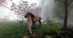 Caramelo ♥ my beloved new horse. 10 (Monavie Voight) Tags: wh water horse bento second life ranch secondlife sl