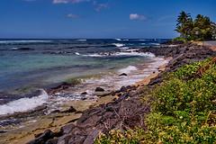 Rugged Coast (AgarwalArun) Tags: sonya7m2 sonyilce7m2 hawaii kauai island landscape scenic nature views clouds pacificocean ocean water waves surf
