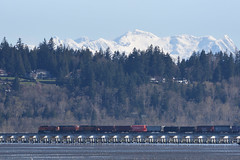 BNSF Train pulling freight from the USA in Canada (D70) Tags: bnsf train pulling freight usa canada bridge across mud bay with coast mountains backdrop sigma 150600mm f563 contemporary tc1401 teleconverter panorama ridge silk monopod