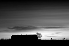 Return (una cierta mirada) Tags: bnw blackandwhite sunset sky clouds cloudscape tree silhouettes nature silhouette