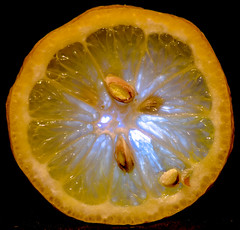 """Macro Monday """"Seeds"""" (peterbaird100) Tags: macromondays lemon seeds citrus"""