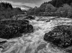 The river flows (catchapman44) Tags: riverorchy dalmally blackandwhite monochrome clouds canon5dmarkiii canon polariser landscape scenic winter scotland highlands westcoast trees river outdoors