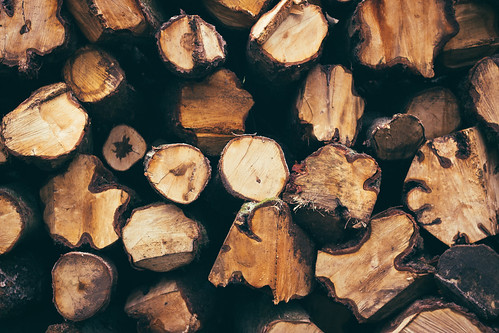 Logs by Alex Holyoake, on Flickr