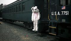 Easter Monday (Mark ~ JerseyStyle Photography) Tags: markkrajnak jerseystylephotography portrait eastermonday 2014 easterbunny