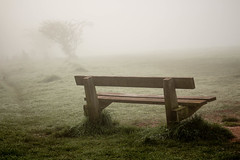 Foggy Bench - Explored (SKAC32) Tags: bench foggy ludwellvalleypark exeter devon swengland canonef2470mmf4lisusm