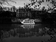 Roma - 2017 (Enzo D.) Tags: biancoenero blackandwhite rivertiber 2017 branches fiume olympus reflection roma rome tevere boat wwwenzodemartinocom lazio italy it