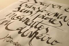 Macro (Ivan Jernimo) Tags: brazil india ink calligraphy sumi portuguese caligrafia nanquim
