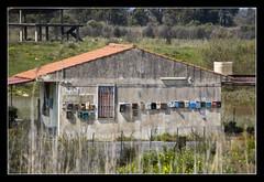 portineria @Oasi Simeto (brunombo) Tags: italy house verde green casa italia mail pentax oasis sicily tamron catania sicilia posta oasi maliboxes simeto oasidelsimeto portineria tamronaf18250mmf3563diiildasphericalifmacro justpentax cassetteposta