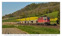 """Re 4/4"""" 11316 - Essert-Pittet (CC72080) Tags: train sbb cargo locomotive cff re420 re44 essertpittet"""