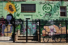 HOME (Roselyne Calle Mirio) Tags: street nyc newyorkcity usa streetart ny newyork color green home brooklyn catchycolors graffiti us gate unitedstates streetphotography vert williamsburg porte multicolored rue muralpainting amérique etatsunis travelphotography arturbain peinturemurale colorfulworld cmwdgreen olympusep1 welovenyc roselynecallemirio