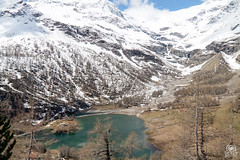 Bernina (andrea.prave) Tags: trip panorama mountain lake snow water berg train montagne lago see tour lac mount neve montaña moritz 山 montagna lombardia viaggio montanha giro بحيرة stmoritz trenino dağ ferrovia innsjø sjö הר göl 湖 озеро אגם fjellet جبل гора tirano βουνό retica ਝੀਲ