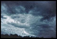 Raindrops (Olysseus) Tags: rain lumix olympus panasonic mai 20mm regen wetter omd em5