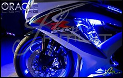 Blue Motorcycle LED (ShopPMLIT.com) Tags: auto new york city blue light urban usa newyork art love beautiful bike night canon dark fun lights photo oracle cool nikon glow ride offroad earth euro parts awesome halo roadtrip headlights led rings motorcycle plasma custom taillights mods headlamps modify automotiveparts angeleyes caraccessories modifications foglights ccfl carlamps projectorheadlights carlighting customheadlights oraclelights shoppmlit pmlit haloringlights