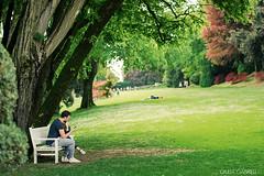 Un panchina nel verde - Parco Sigurt (Giulia Gabrieli Fotografia) Tags: flowers verde green primavera alberi relax spring nikon riposo fiori piante prato panchina valeggiosulmincio parcosigurt naturalistica nikond3100