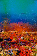 color road (masayan523) Tags: color water saturation 風景 水 色 高彩度 色遊び