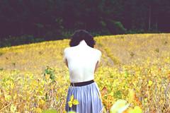Landscape 02 (model Andresa) (Andy Wursthorn .) Tags: portrait nature yellow brasil photography back colorful soja lanscape beautifulgirl andresacardoso