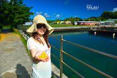 (Moson Kuo) Tags: ocean travel sea beach nature beautiful landscape nikon scenery diving nikkor  ultrawide palau    rockisland   2014 koror            palauroyalresort      afs1424mm28g