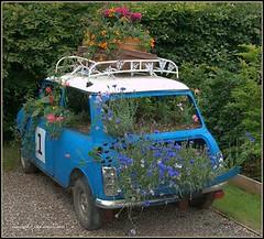 Planter-car_flickr_com (DougBittinger) Tags: