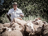 Ramaders 381 (Sebas Adrover) Tags: españa hat rural canon countryside spain mediterranean sheep farm lamb campo sombrero mallorca goatherd mediterráneo oveja baleares granja balearicislands cordero balears illesbalears felanitx cabrero g15