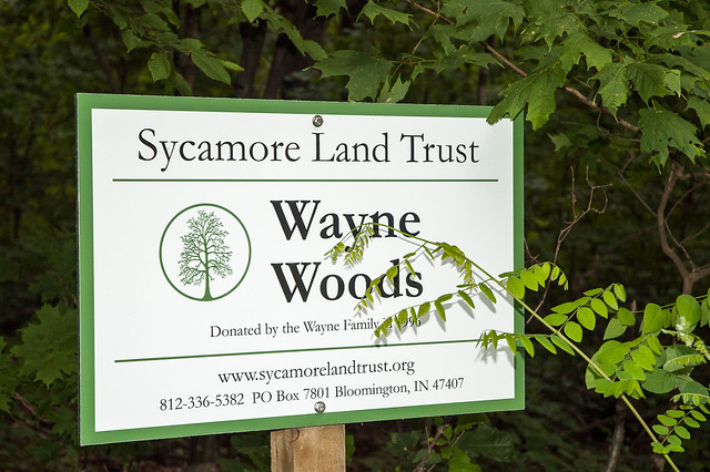 Wayne Woods - July 3, 2014