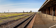 Rails (RWYoung Images) Tags: brick station canon stitch pano railway historic outback rwyoung 5d3