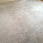 "AAA carpet, upholstery and air duct cleaning <a style=""margin-left:10px; font-size:0.8em;"" href=""http://www.flickr.com/photos/113741555@N07/14464464702/"" target=""_blank"">@flickr</a>"