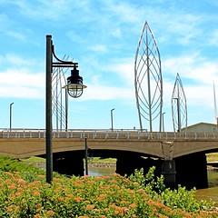 Wander Downtown (aj.wales) Tags: bridge flowers sculpture water lamp beautiful river scenery kansas wichita riverwalk
