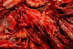 Seafood at Mercat de Sant Josep