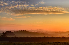 West Gippsland misty winter sunset [Explored] (phunnyfotos) Tags: sunset sky cloud mist weather misty fog clouds rural landscape nikon skies farm foggy australia victoria vic gippsland brandycreek warragul drouin westgippsland d5100 nikond5100 phunnyfotos gippypics