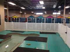 Swim Area and Kennels