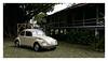 17_02_05_134p (2) (Quito 239) Tags: volkswagen 1971volkswagen 1971volkswagensuperbeetle superbeetleconvertible vw bug vocho escarabajo puertorico haciendaigualdad volky