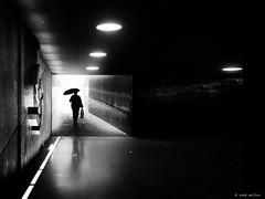 It's rain again (René Mollet) Tags: rain spring underground unterführung blackandwhite bw backlight blackwhite monchrom monochromphotographie street streetphotography shadow silhouette station sbb schwarzweiss streetart streetphotographiebw renémollet umbrella woman
