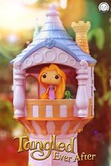 Happy Birthday Mandy Moore! (PrinceMatiyo) Tags: popvinyl funko tangled disneyprincess disney rapunzel mandymoore