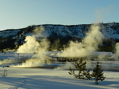 Yellowstone (Ramona H) Tags: yellowstone geyserbasin hydrothermal hotsprings steam winter snow cold