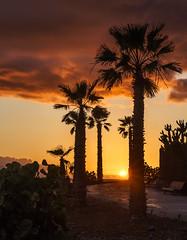 2016.05-Teneriffa-264-BA (FV1405) Tags: 2016 adeje kanarischeinseln sonnenuntergang spanien teneriffa costaadeje canarias es