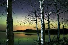 View of the Lake (John Andersen (JPAndersen images)) Tags: alberta aurora madden night panorama reflections stars trees twisty rokinon