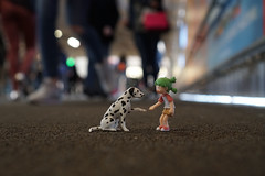 Give me five, please (omgdolls) Tags: yotsuba よつば