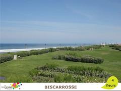 biscarrosse_plage (Tourisme Landes) Tags: landes fleurs vvf