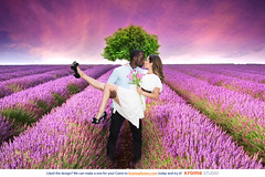 #LavenderField (Krome Studio) Tags: dance relationship male happy romance romantic together young female love couple girl outdoor togetherness affection smile fun hug holding handsome girlfriend boyfriend kiss action emotional standing skirt pair white closeness lovers day looking shirt lover smiling fondness sensuality affectionate inlove background outdoors relaxed africanamerican black blackmale hispanic ethniccouple hip unitedstatesofamerica