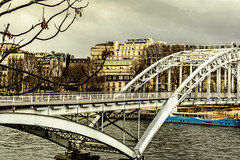 Gloomy Day (Tanya.Kirilova) Tags: passerelledebilly debillyfootbridge riverseine paris france composition bridge river cityscape urbanphotography urban clouds arch curve geometry nikond7100