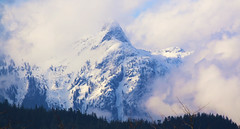 mountain (kentmatthiesen) Tags: snow mountain north vancouver bc slide avalanche