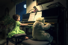 duo (erwann.martin) Tags: children child girl green plush peluche piano music night moon erwannmartin nikon